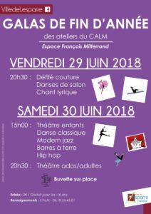 2018.06.29---Gala-CALM