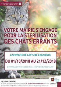 2018.09.28---Campagne-Stérilisation-Chat---affiche